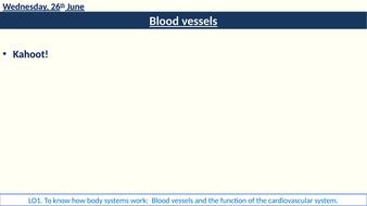 3-blood-vessels-start-write-up.pptx