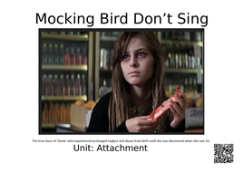 mockingbird-don't-sing.docx
