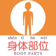 Body Parts (Mandarin Chinese) Flashcards & Word Mat - 身体部位