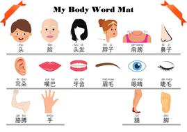 Body-Parts-Word-Mat.pdf