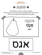 Learning-Hebrew---Fruit---Vegetables_Page_07.png