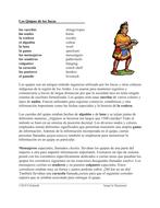 Quipus y Chasquis Lectura y Cultura: Ancient Incan Spanish Cultural Reading