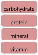 Science keywords word wall display