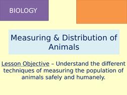 TES-Learning-Episode-3---Abundance-of-Animals-PITFALL-TRAPS.pptx