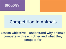 TES-Learning-Episode-4---Competition-in-Animals.pptx