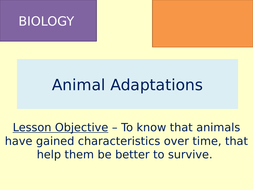 TES-Learning-Episode-6---Adaptations-in-Animals.pptx