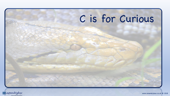 C is for Curious - Whole School Assembly