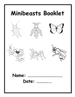 Minibeasts -  Information Booklet & Pictures