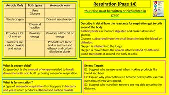 Y8-Homework-RAISE---Respiration.pptx