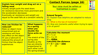 Y7-Homework-RAISE---Contact-Forces.pptx
