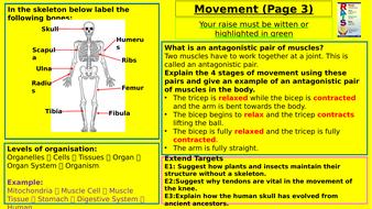 Y7-Homework-RAISE---Movement.pptx