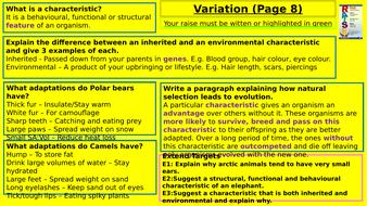 Y7-Homework-RAISE---Variation.pptx