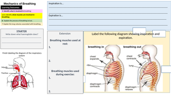 lesson15Mechanics-of-breathinglearningmat.pptx