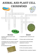 Biology word search Puzzle: Structure of cells (Includes answer key)