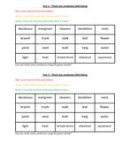 Y2-Plants-RAG-rate.pdf