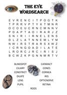 Biology word search Puzzle: The eye (Includes answer key)