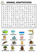 Animal-Adaptation-Word-Search-Activity.pdf