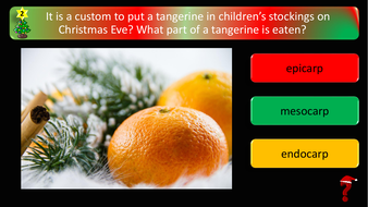 preview-images-science-christmas-quiz-2.pdf