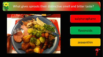 preview-images-science-christmas-quiz-25.pdf