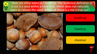 preview-images-science-christmas-quiz-27.pdf