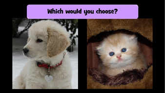 preview-images-which-would-you-choose-2.pdf