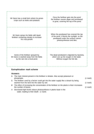 HW-MS-B17.2-Eutrophication-Answers.docx