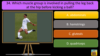 PREVIEW-IMAGES-AQA-GCSE-PE-REVISION-QUIZ-Applied-anatomy-and-physiology-14.pdf