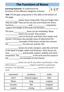 structure-of-skeleton-workbook-7.pdf