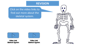 preview-images-structure-of-skeleton-powerpoint-25.pdf