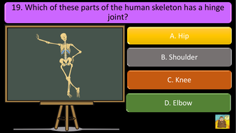 preview-images-structure-of-skeleton-quiz-14.pdf