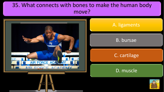 preview-images-structure-of-skeleton-quiz-28.pdf