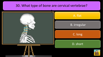 preview-images-structure-of-skeleton-quiz-25.pdf
