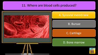preview-images-structure-of-skeleton-quiz-8.pdf
