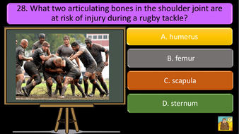 preview-images-structure-of-skeleton-quiz-21.pdf
