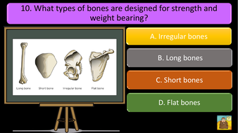 preview-images-structure-of-skeleton-quiz-7.pdf