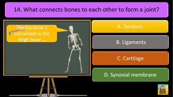 preview-images-structure-of-skeleton-quiz-11.pdf