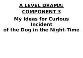 Curious-Incident-Directorial-Ideas-Booklet.docx