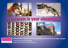 A-museum-in-a-classroom.pdf