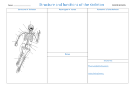 1.-Structure-and-function-of-the-skeletal-system.docx
