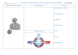 3.-Structure-and-function-of-the-cardio-respiratory-system.docx
