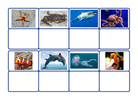 sea-creatures-match-photo-to-image.pdf