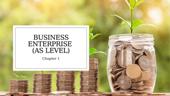 Unit 1 Business and Its Environment: Business Enterprise (AS Level).pptx