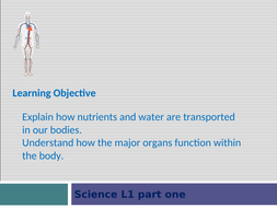 science-PPP--nutrients-found-in-water-needed-for-our-bodies-part-1.ppt