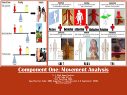 Movement-Analysis-Revision-Clock.pdf