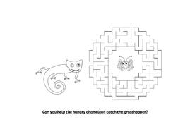 hungry_chameleon_maze.docx