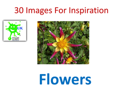 30-Images-For-Inspiration-flowers.pdf