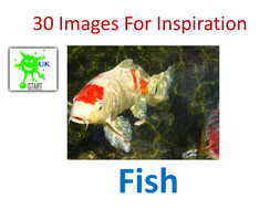 30-Images-For-Inspiration-Fish.pdf