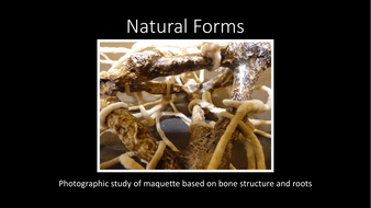 Natural-Forms-photographic-study-of-sculpture-example-slideshow.pdf