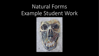 Natural-Forms-Example-student-work.pdf