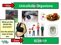 1.5---Unicellular-organisms.pptx